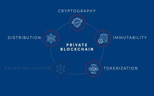 elements of private blockchain